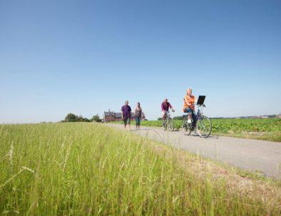 Brugse Ommeland fietsen